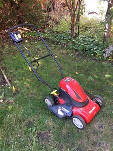 Tondeuse Homelite 24V Lawnmower