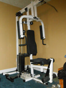 Northern Lights Gym Kitchener / Waterloo Kitchener Area image 6