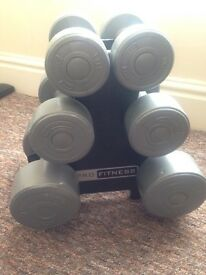 Pro Fitness Weights