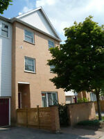 Rooms for rent - walking distance to Western - great townhouse!