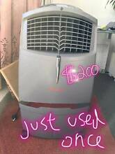 Honeywell CL30XC Indoor Evaporative Cooler Rhodes Canada Bay Area Preview
