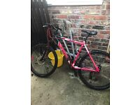 Evade mountain bike front and back discs shame me little bro painted some of it