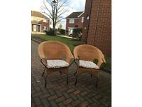 Two iron framed cane tub chairs
