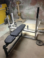 Northern Lights Bench Press with Squat Attachment - Negotiable