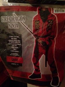 Boys Halloween Costume - FIRE DRAGON NINJA (Size 12-14)