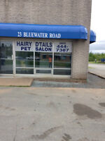 Looking for a new grooming salon?