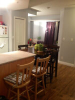 FEMALE roommate downtown apartment for August 1