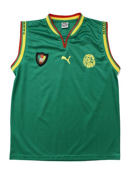 20020475a 2014 brazilian world cup soccer jerseys cameroon team home samuel ...