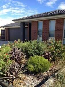 Four Bedroom 2 Bathroom House For Rent Bonner Gungahlin Area Preview