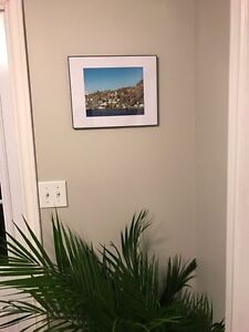 Framed picture of the battery St. John's Newfoundland image 2