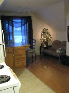 Large One Bedroom Apartment For Rent With Harbour View