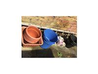 Job lot plant pots and garden buckets £15