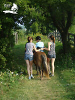 Camp Pride is looking for volunteers for Therapeutic Riding.
