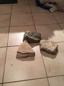 Limestone fish tank