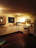 Renovated 3 bedroom basement suite in Thickwood