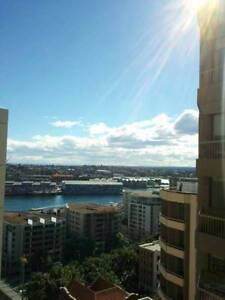 $$ URGENT WATER VIEW GIRLS ONLY+LUXURY ROOM+GYM+POOL+ $$ Sydney City Inner Sydney Preview