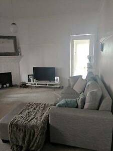 Great condition grey couch - make an offer Bronte Eastern Suburbs Preview