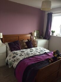 Double room to rent from 12/12/16 in Worle