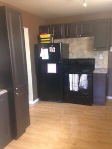 Young professional looking for Roommate Kingston Kingston Area image 5
