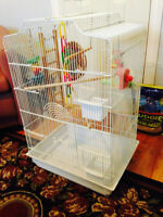 Parakeet cage with accessories