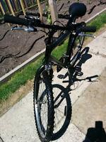 Vélo de marque TRIOMPH CYCLONE