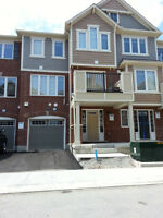 MATTAMY 2 BED 2.5 BATH TOWNHOUSE IN MILTON FOR LEASE