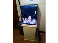 Fish tank,stand, sump light and all equipment