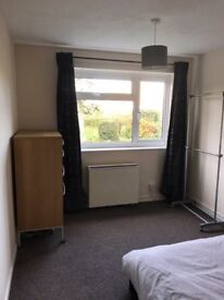 DOUBLE ROOM TO LET IN SPACIOUS G/FLOOR FLAT