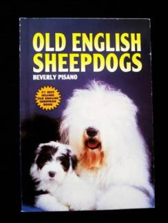 Old English Sheepdogs - Beverly Pisano