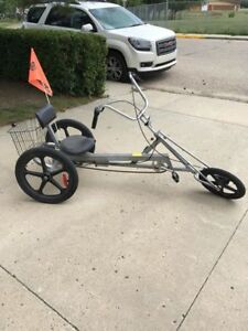 Low Rider Tricycle