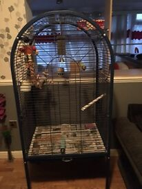 Large bird / parrot cage on wheels