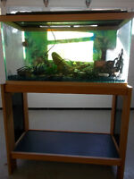 25 Gallon Fish Tank with Stand
