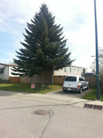 Mobile home on it's own property in NE Calgary, very low taxes