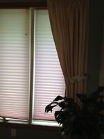 Side Drapes and Pleated Blinds