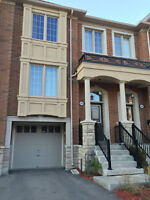296 Humeniuk Crt, Newmarket. **Townhouse Move in 30 days**