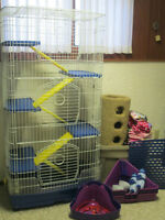 FERRET CAGE AND ALL ACCESSORIES FOR SALE!