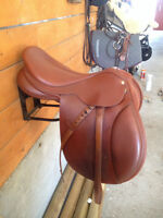 Collegiate Saddle with Exchangeable Gullet & Measuring Gauge