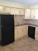 BEAUTIFUL RENOVATED 2 BR–NEAR FOOTHILLS HOSPITAL & BOW RIVER