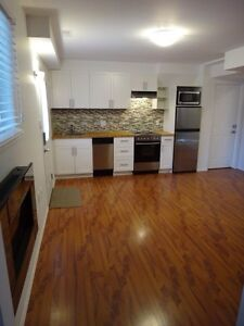 Walkout basement apartment in Columbia area available Nov 1/16