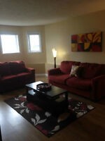 Clean & Bright Private Entrance 1 Bedroom Apt, Avail June 1st