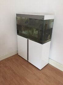 Ciano Emotions 100 fish tank