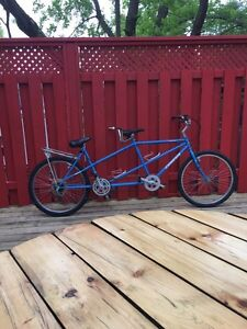 Trade bicycle built for two