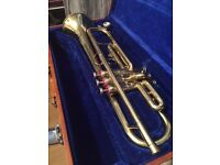 Lark Beginners Trumpet for Sale