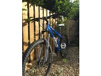 CUSTOM Voodoo Bantu Mountain Bike