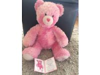 Limited edition pink build a bear