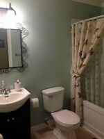 Bright, one-bedroom apartment in Mount Pearl (washer/dryer inc)