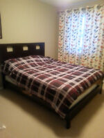 ONE FURNISHED BEDROOM IN LEDUC available ASAP