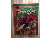 Spider man canvas