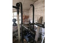 Pull ups and dips bar. Gym equipment