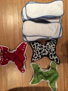 Bummis cloth diaper cover and soakers